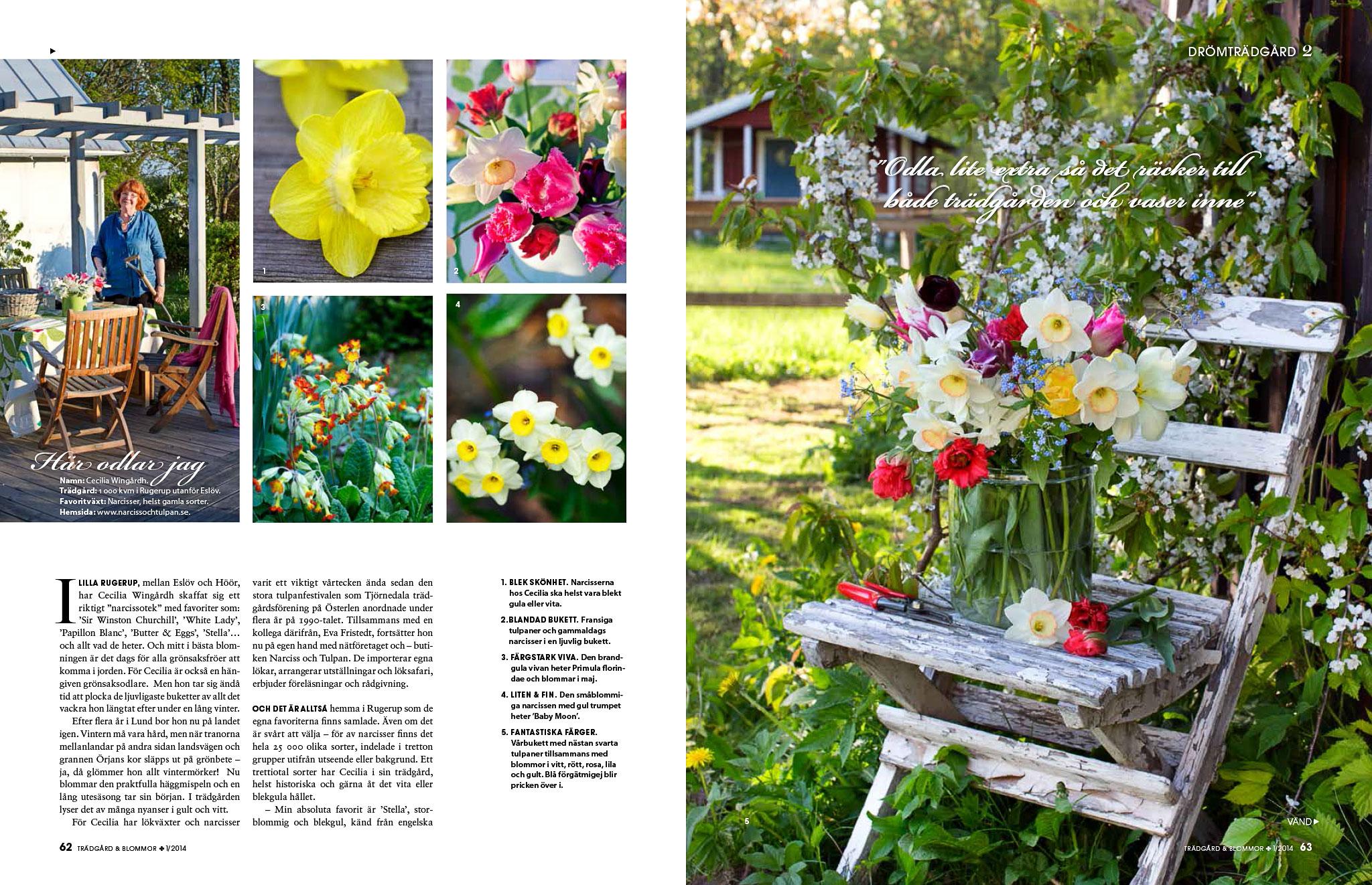 Trädgård & blommor 1/2014