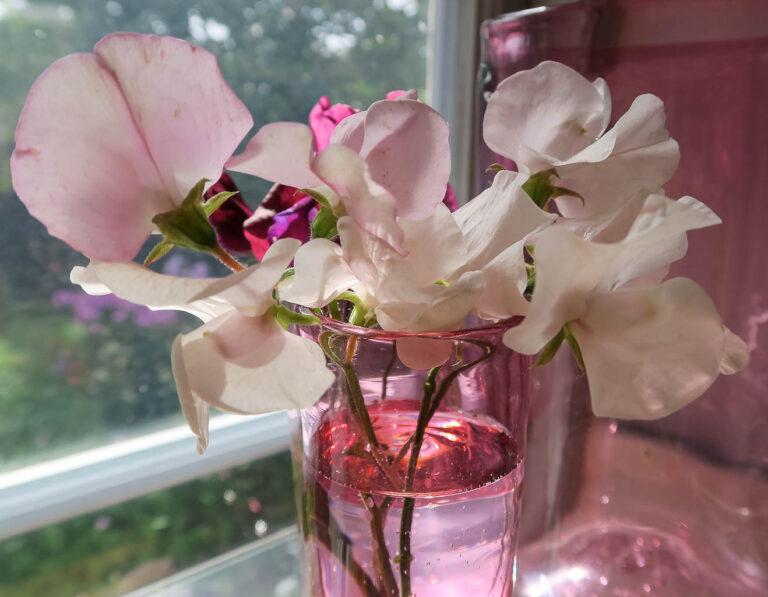 Romantik i glas med luktärtsbukett.